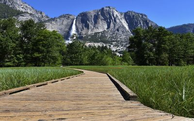 Destination Highlight: Yosemite National Park