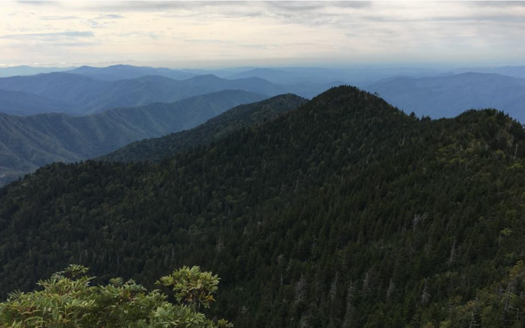 Destination Highlight: Great Smoky Mountains National Park