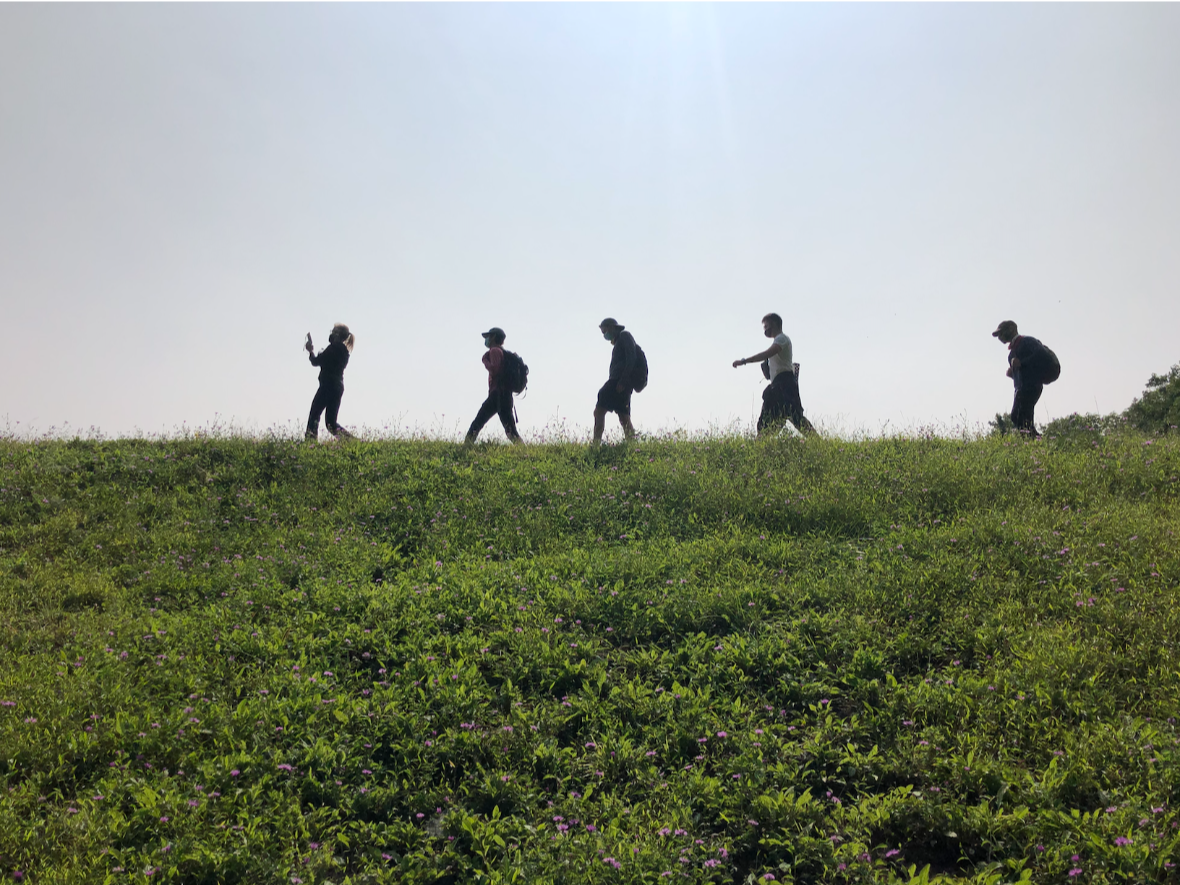 5 people hiking on a mountain ridge where there is beautiful green grass and slightly overcast skies